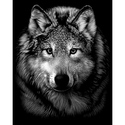 Wolf Face - Reeves Medium Scraperfoil Silver