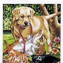 Dog & Kittens - Reeves Paint By Numbers