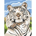 White Tiger - Reeves Paint By Numbers