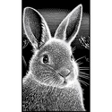 Rabbit - Reeves Mini Scraperfoil Silver