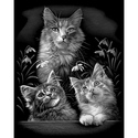 Cute Kittens - Reeves Medium Scraperfoil Silver