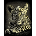 Leopard Cub - Reeves Medium Scraperfoil Gold