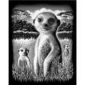 Meerkat - Reeves Medium Scraperfoil Silver