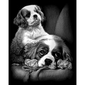 Spaniels - Reeves Medium Scraperfoil Silver