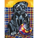 Playful Labrador - Reeves Medium Paint By Numbers