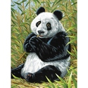 Panda - Reeves Paint By Numbers